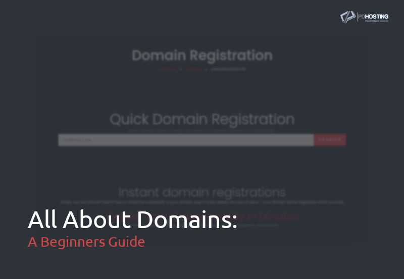 All about domains - a beginners guide